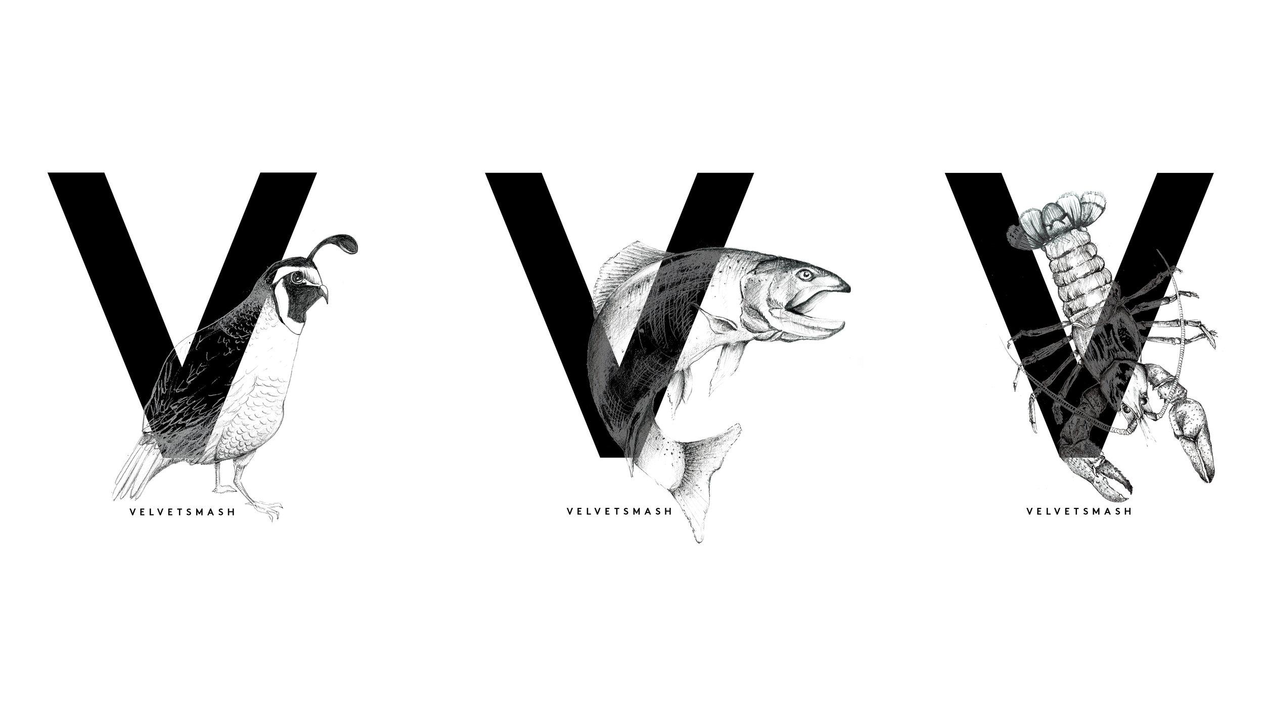 Illustrations_webportfolio_v14.jpg