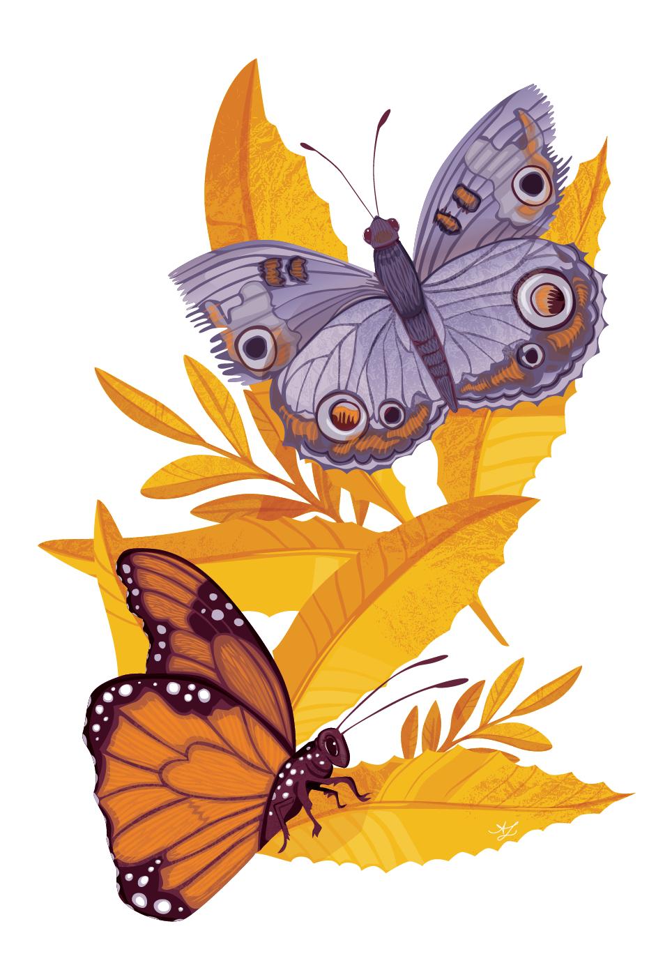 Amanda_Lenz_ArtSticks_Artboard 1.png