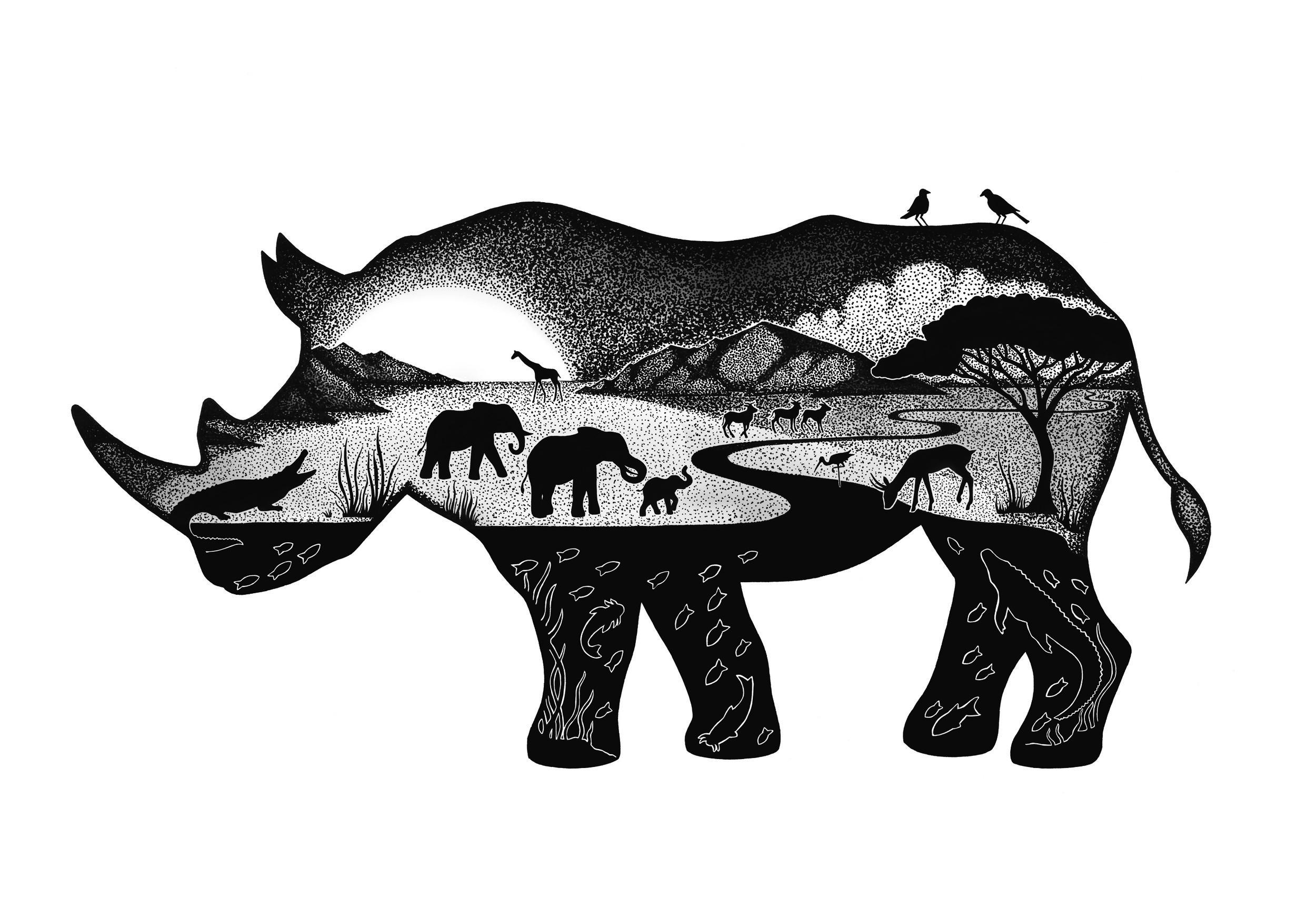 Rhino (1).jpg