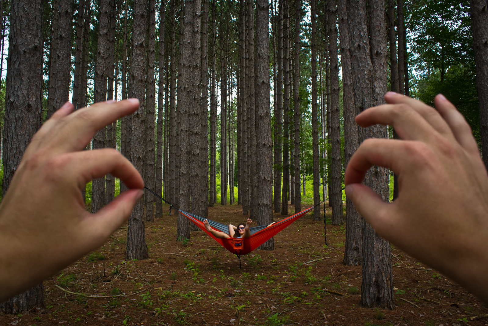 Eno Hammocks - Oak Openings Metro Park - Ohio
