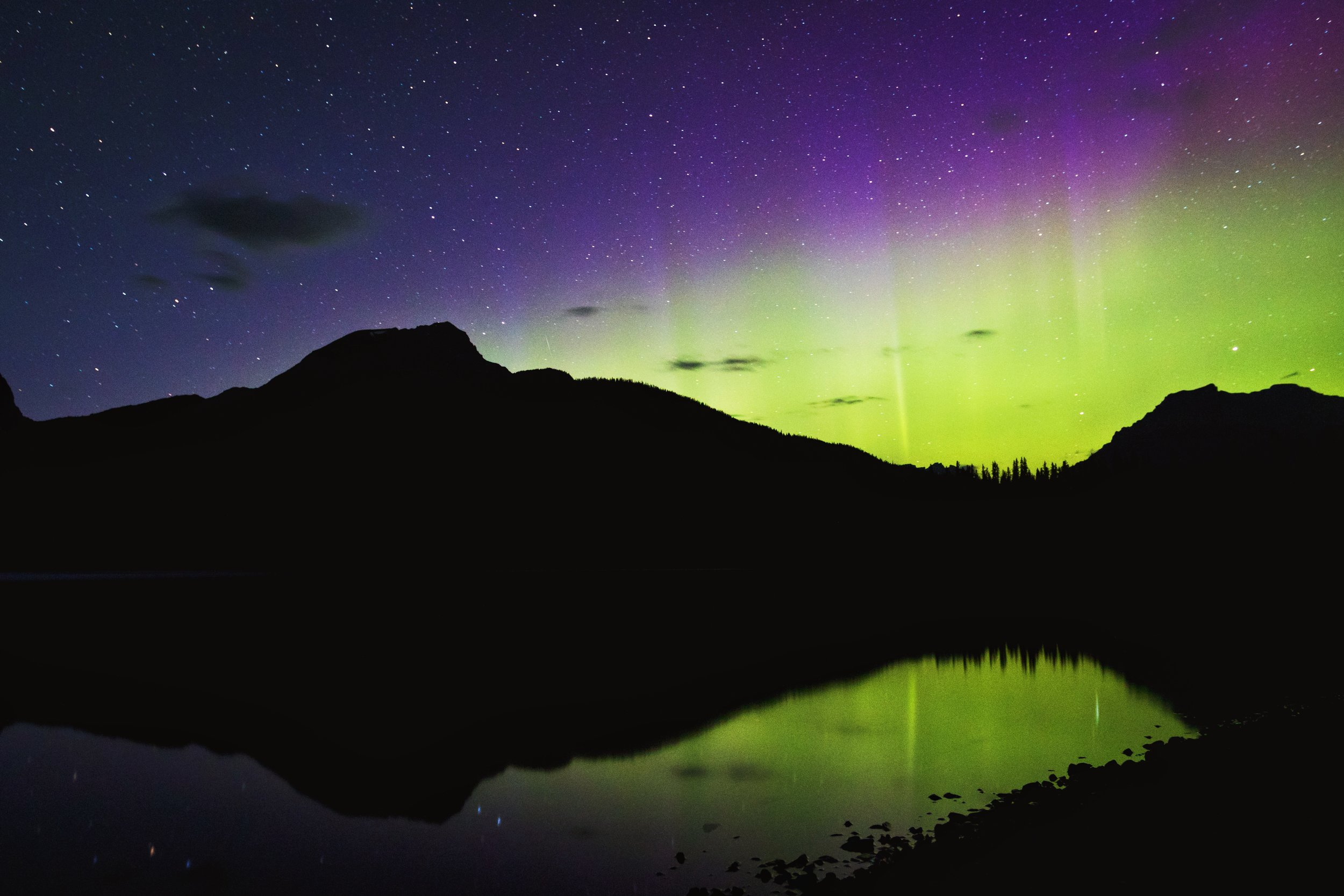 Northern Lights Over Hector Lake - Banff National Park