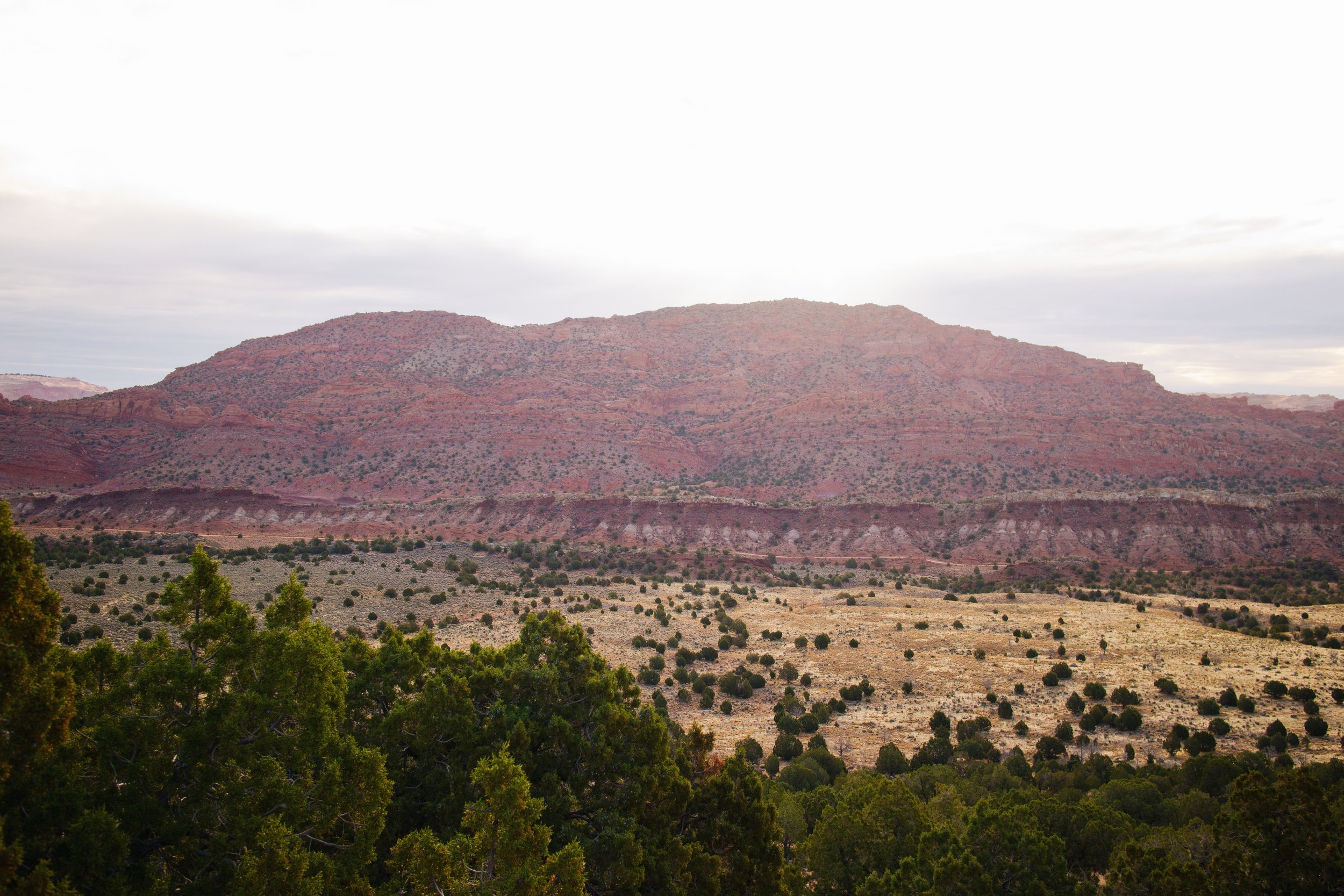 Looking back at the Vermillion Cliffs