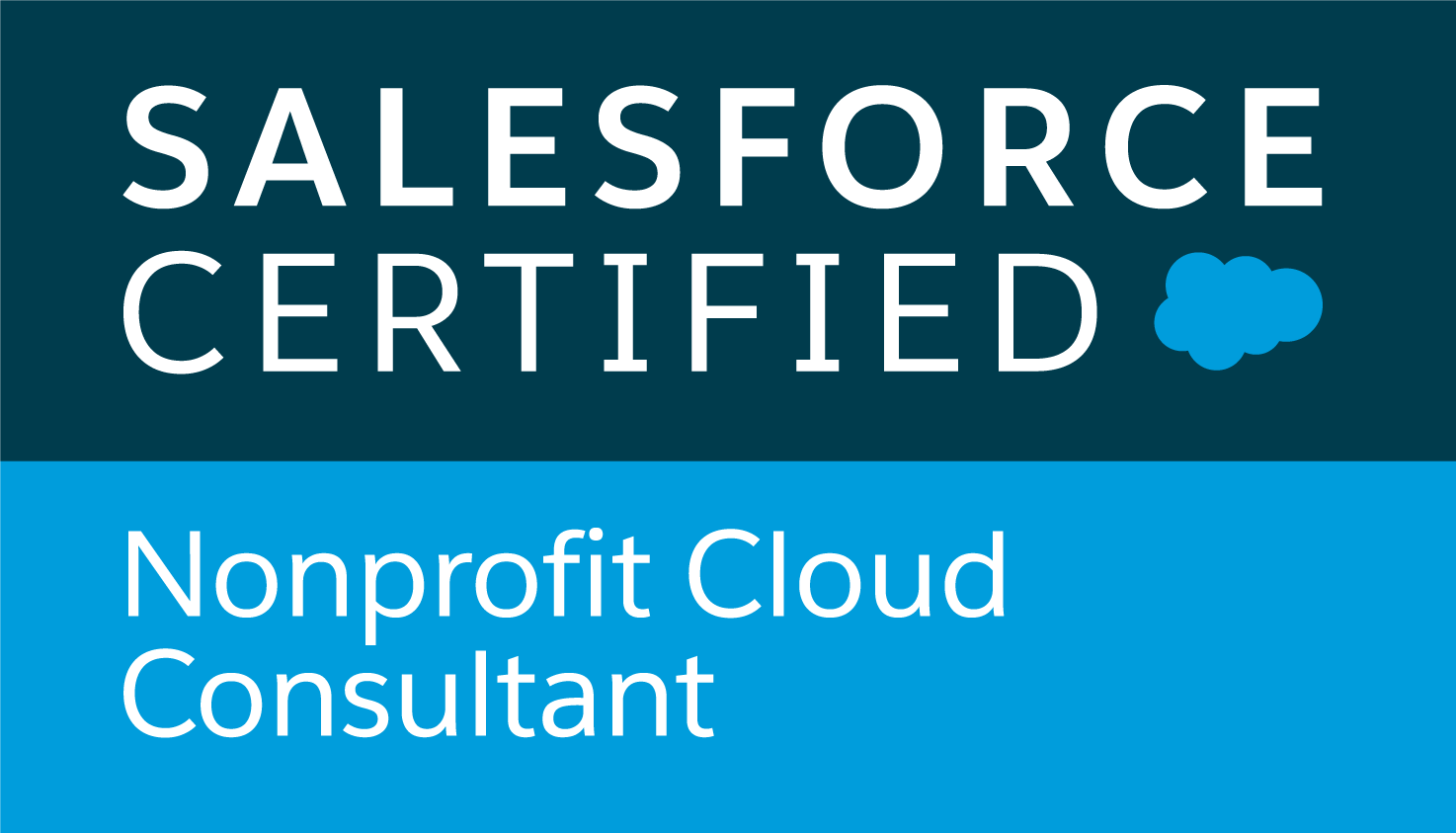 Nonprofit-Cloud-Consultant_RGB[1].png