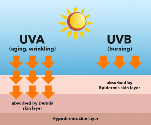 top-4-products-to-keep-uv-rays-at-bay3.png