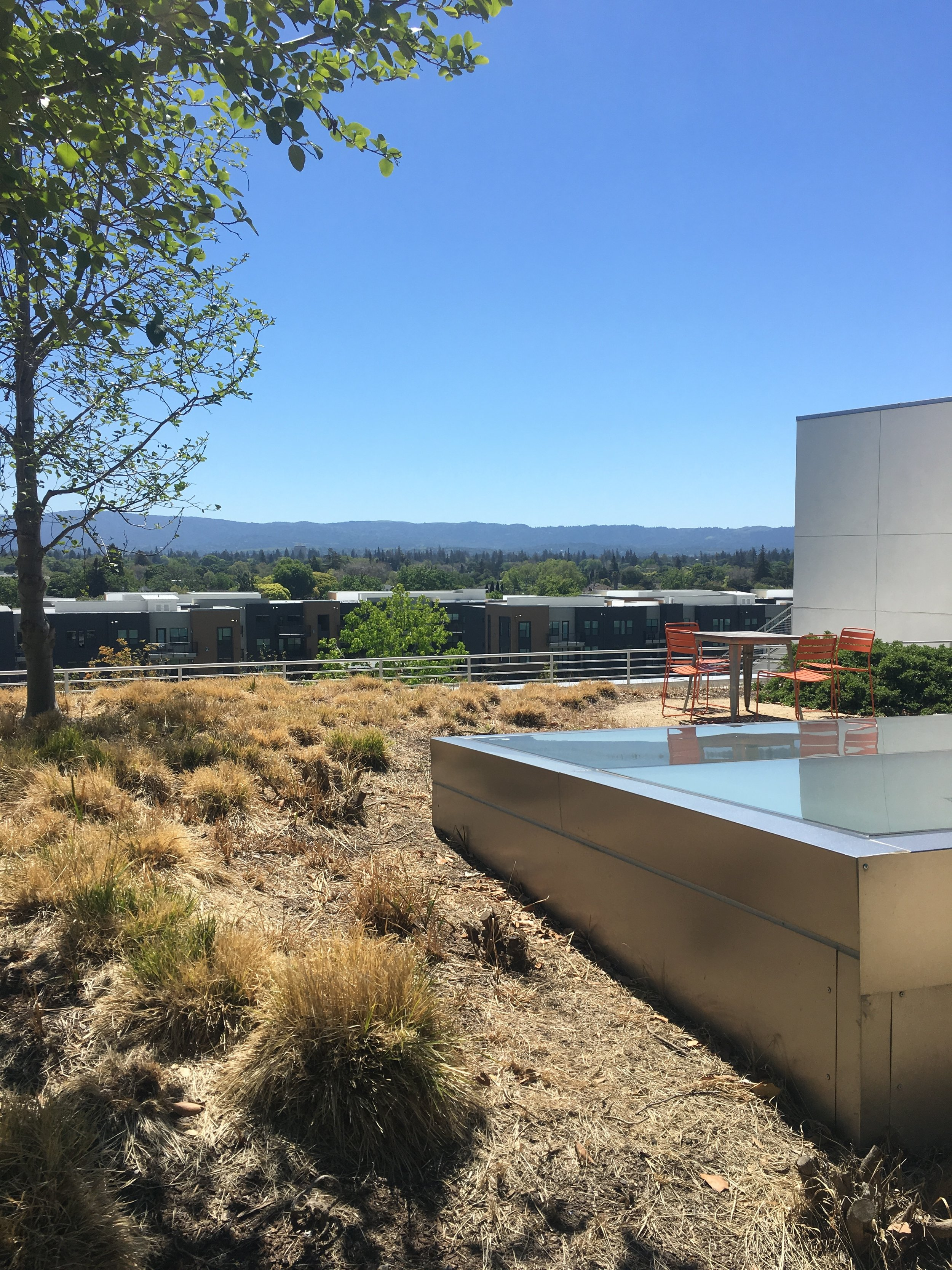 Rooftop at Facebook