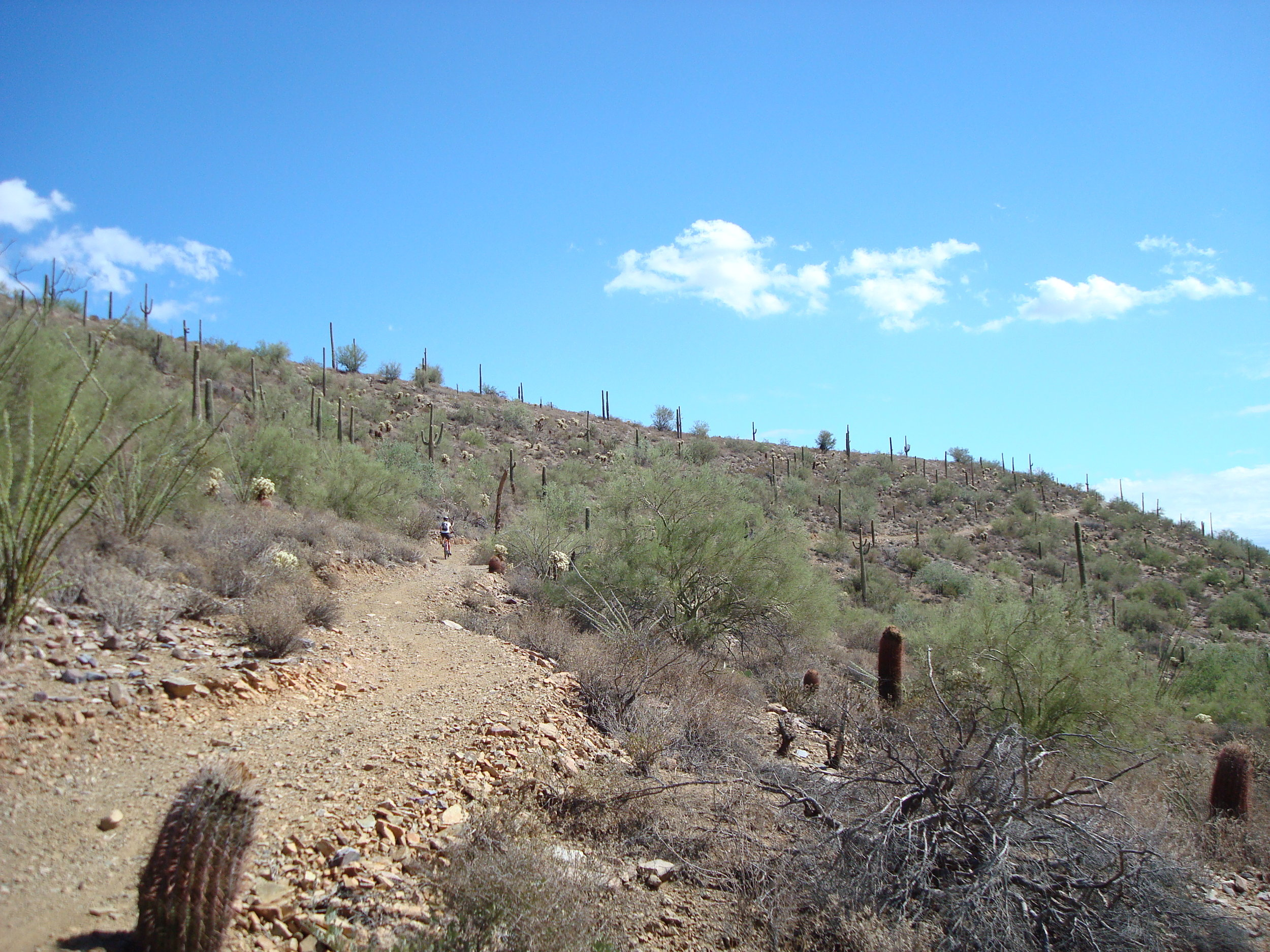 Many of the area climbs are made easier by gentle gradients and traversals.