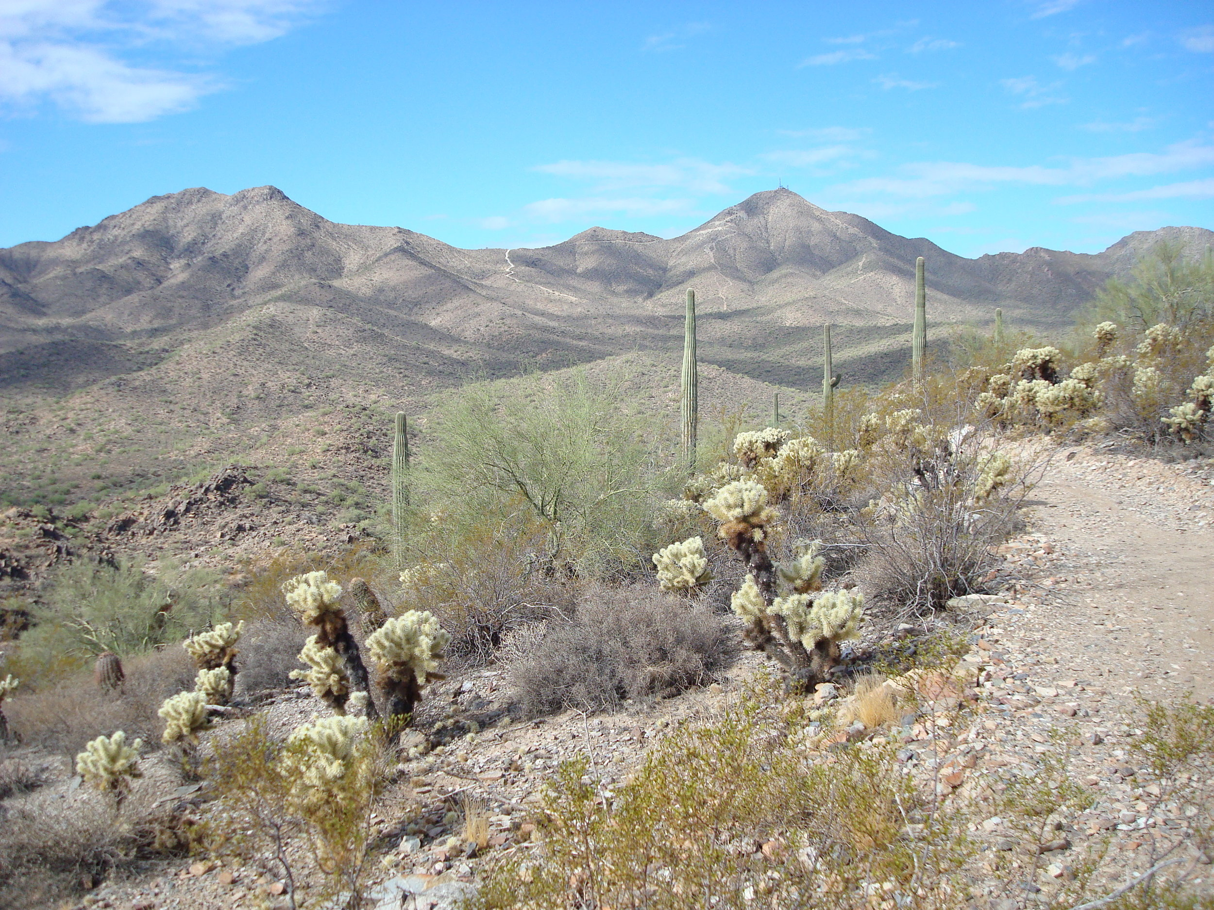 With all the right connections, you can ride up and over the McDowell Mountains