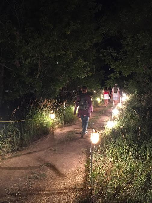 hinterland night walk.JPG