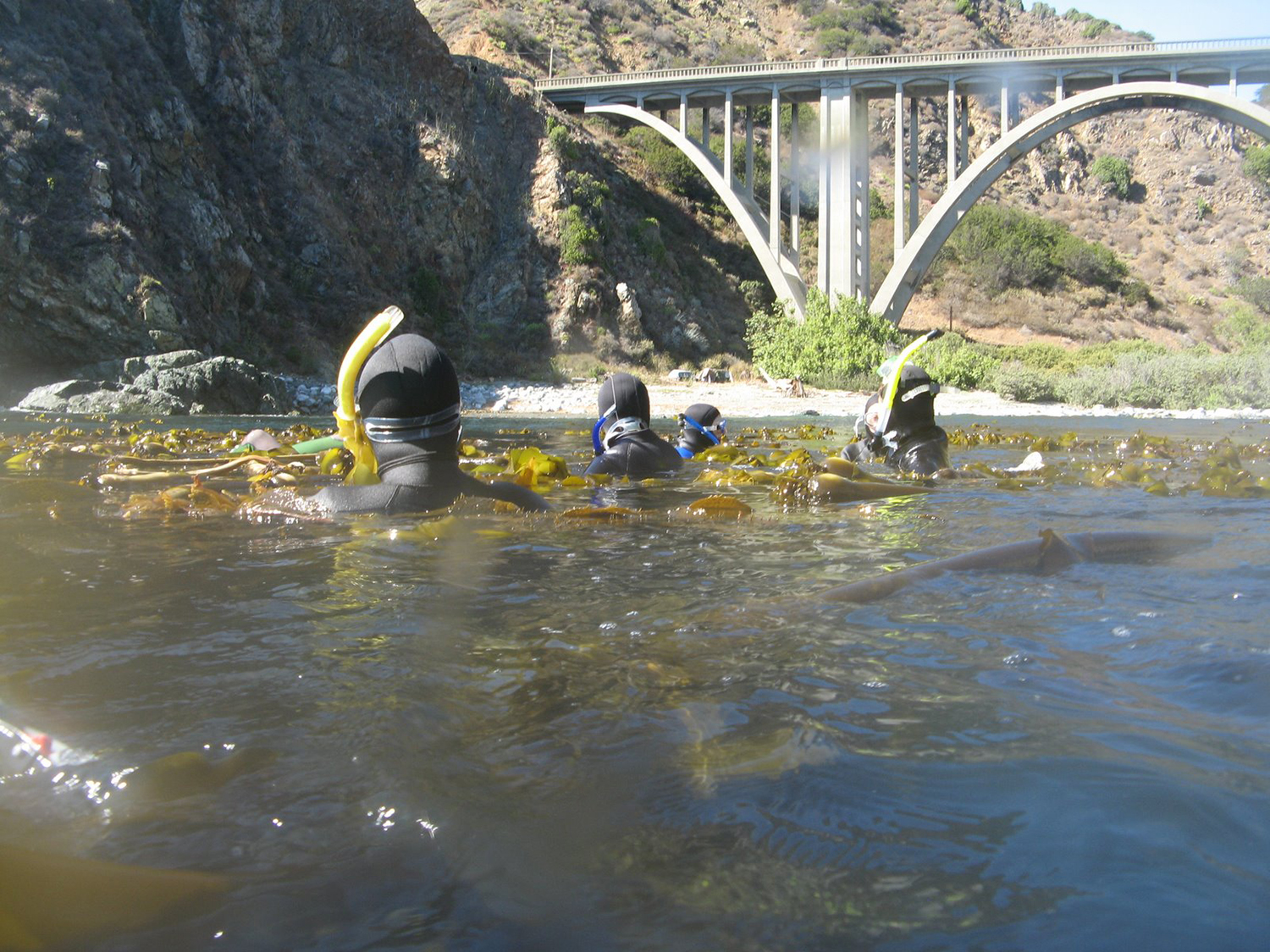 Snorkling by Bixby Bridge Big Sur Su08.jpg
