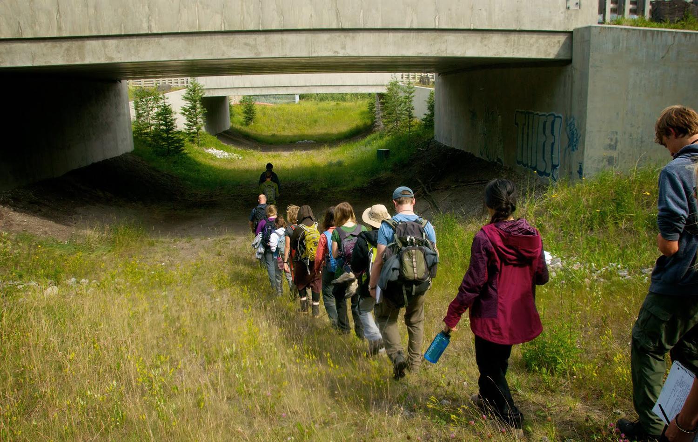 Banff Wildlife corridor underpass.jpg
