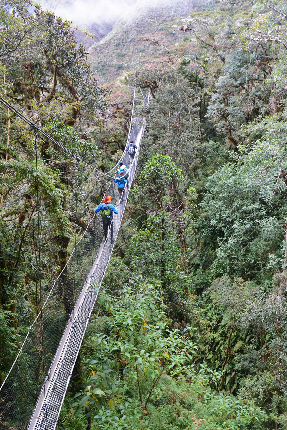 Peru walking bridge DSC_0441_ed.jpg