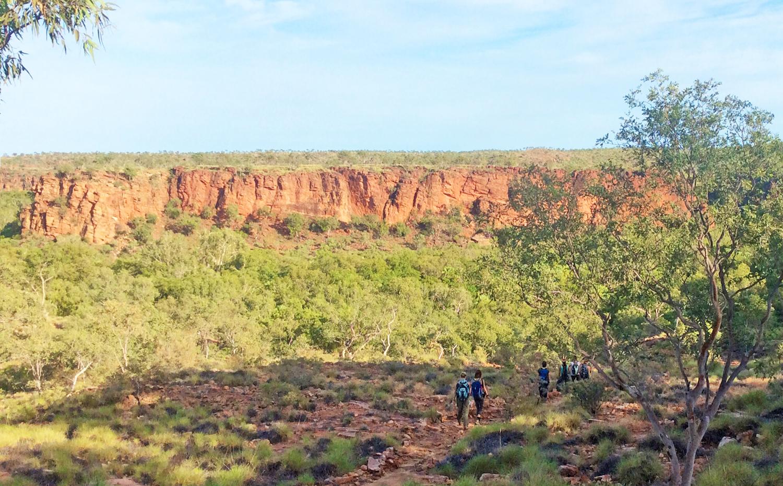 WS Australia bush hike.jpg