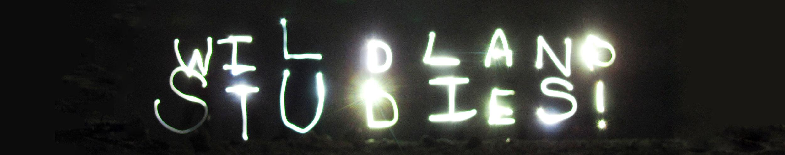 WS slice 2 New Zealand light up.jpg