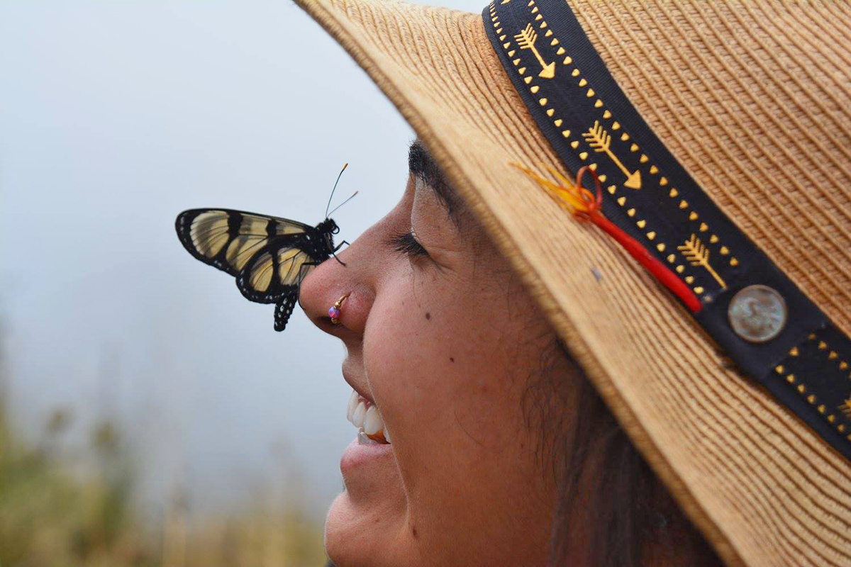 WS Peru Slide Show Add 5-19 butterfly nose 15168782.jpg