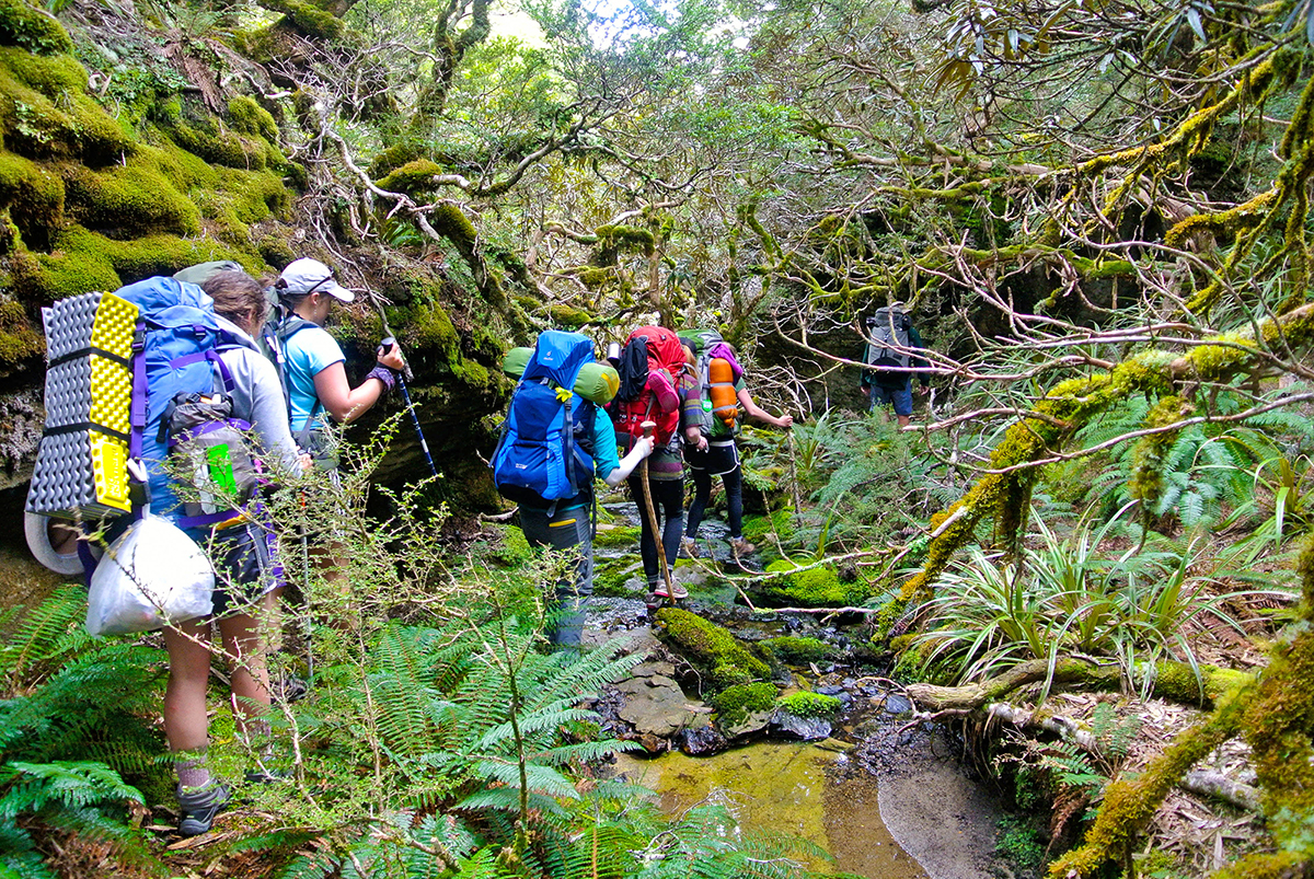 WS-New-Zealand-hobbitlandhiking-20131114-DSC_1583.jpg