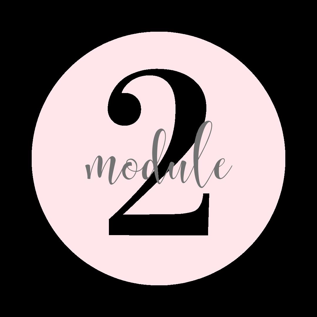 module-2.png