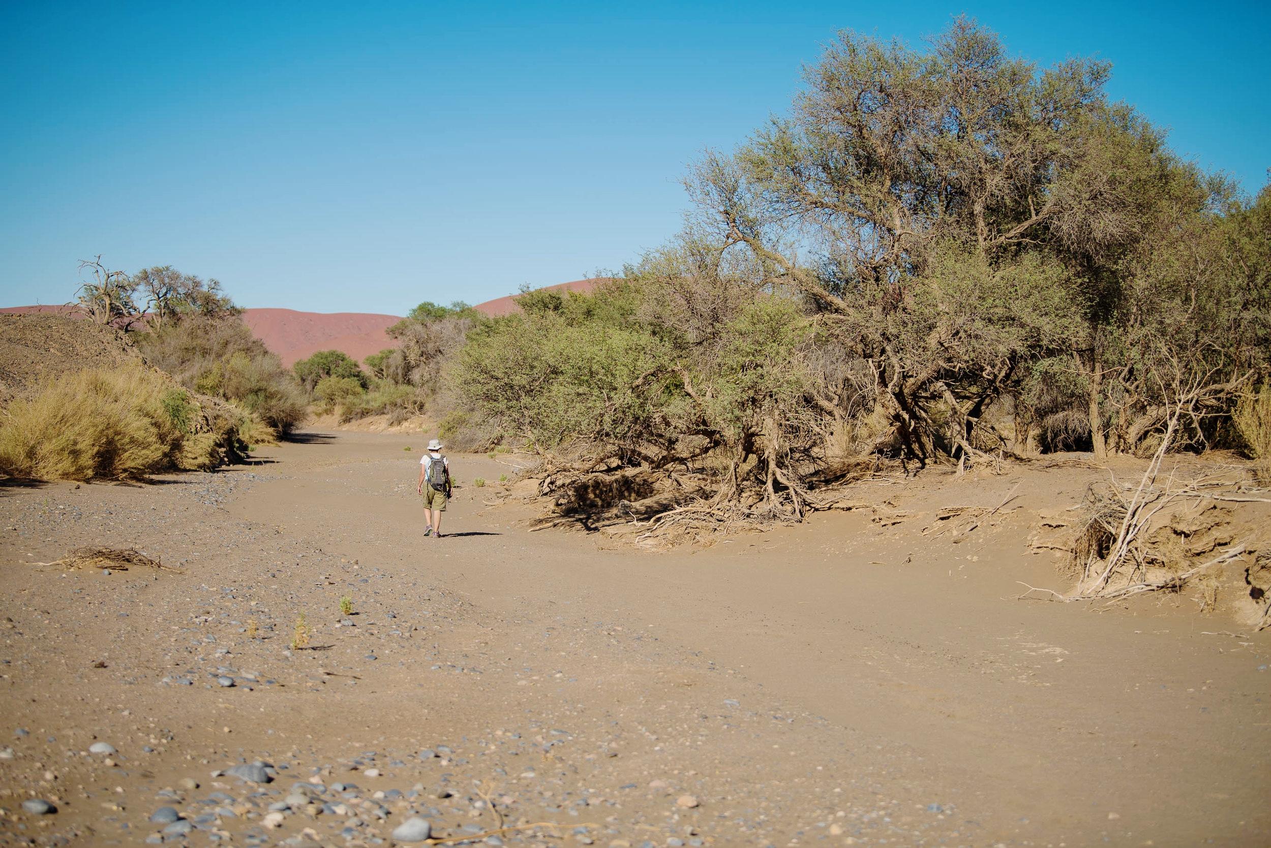 Tsauchab River