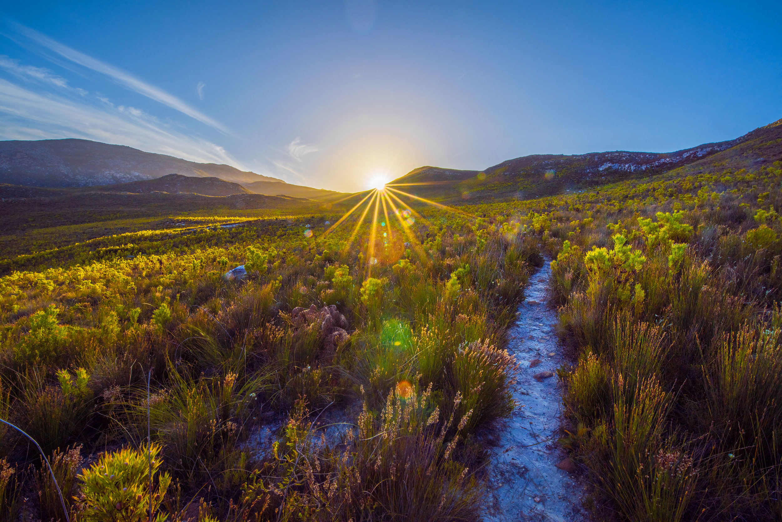 A trail winds up into the hills on the grounds of the Kolkol Mountain Lodge near Botrivier, South Africa.