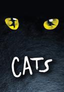 10. Cats.jpg