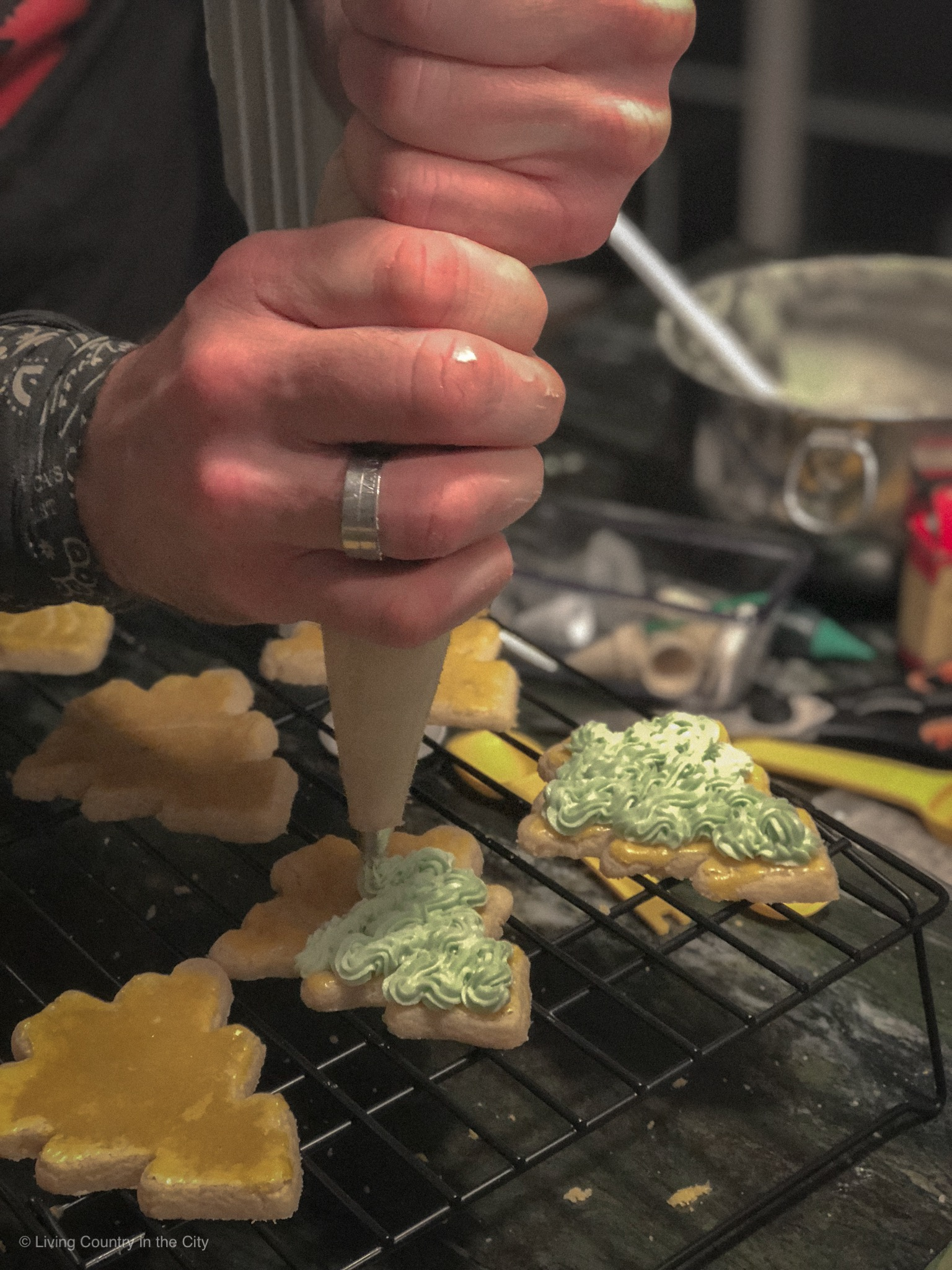 lc_blog_christmascookies_011_v1.JPG