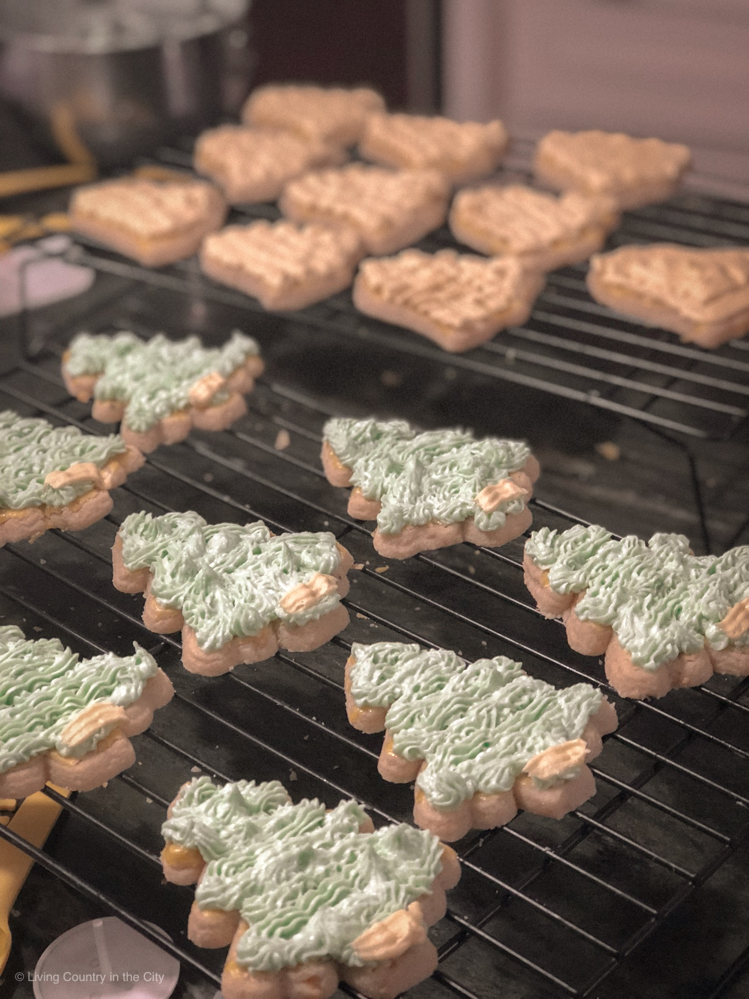 lc_blog_christmascookies_012_v1.JPG