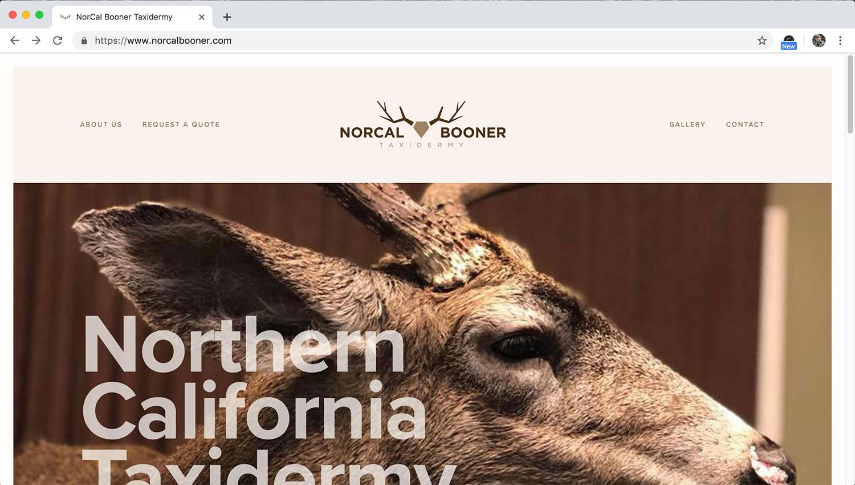 lc_webdesign_norcalbooner_01_v1.jpg