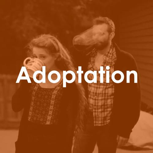 Adoptation web 1.png