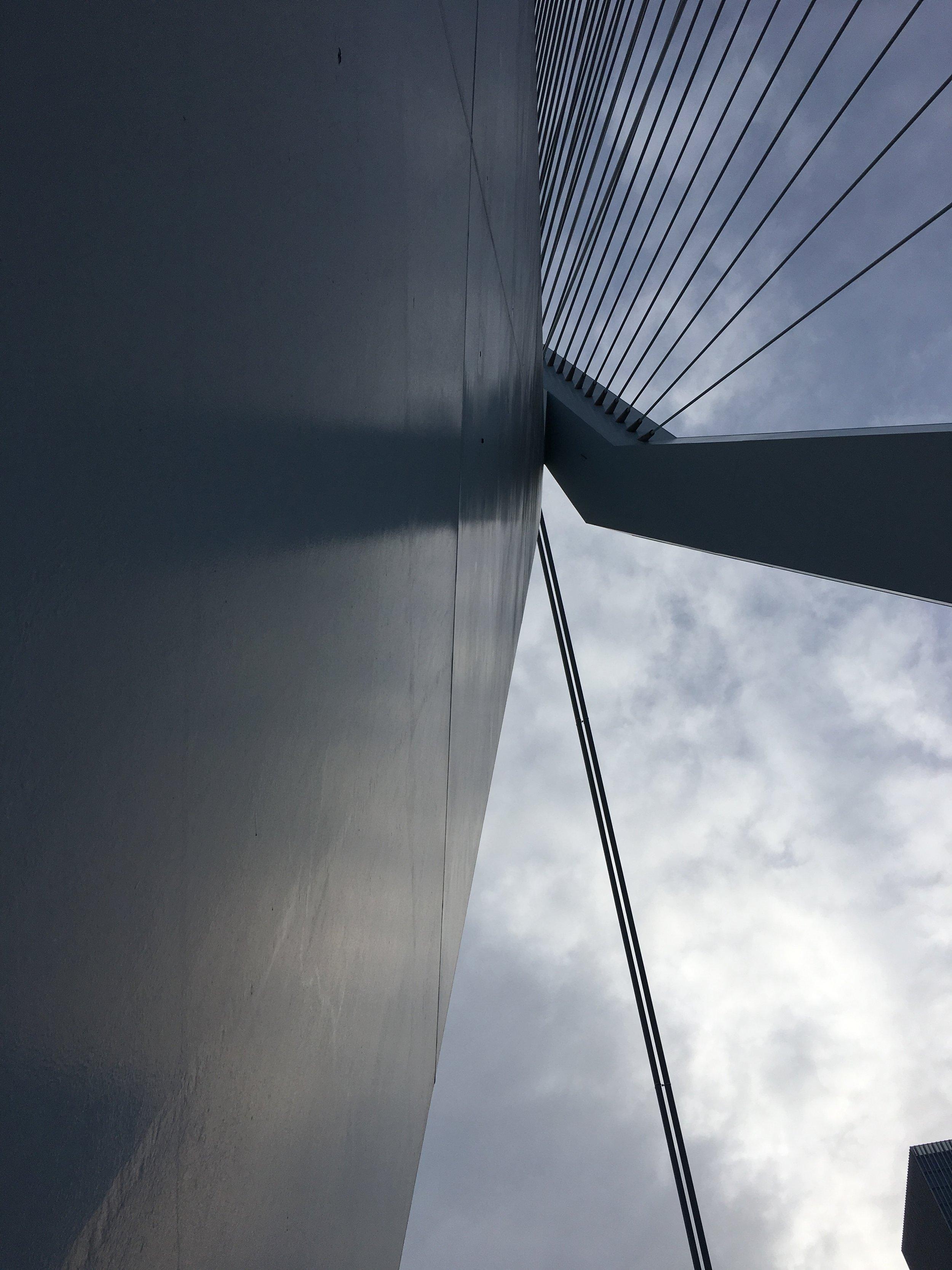Rotterdam_Eramus Bridge.jpg