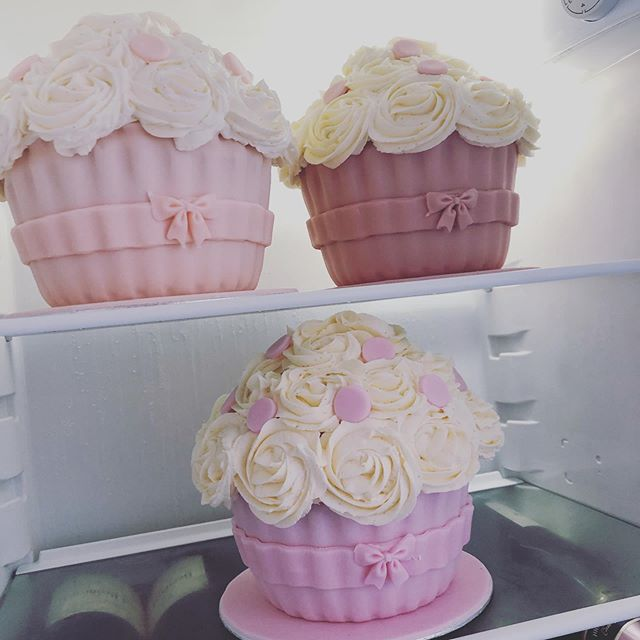 "Ready for a ""smashing"" weekend 🥳 #eviebronckaers #eviebronckaersphotography #littlestarsphotographybyeviebronckaers #photography #cake #cakesmash #lucianossweetart #allgirls #differentpinks #funfunfun"