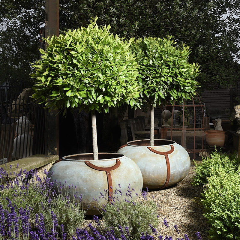 Copper planters made from old coating drums, sourced in a Swiss chocolate factory