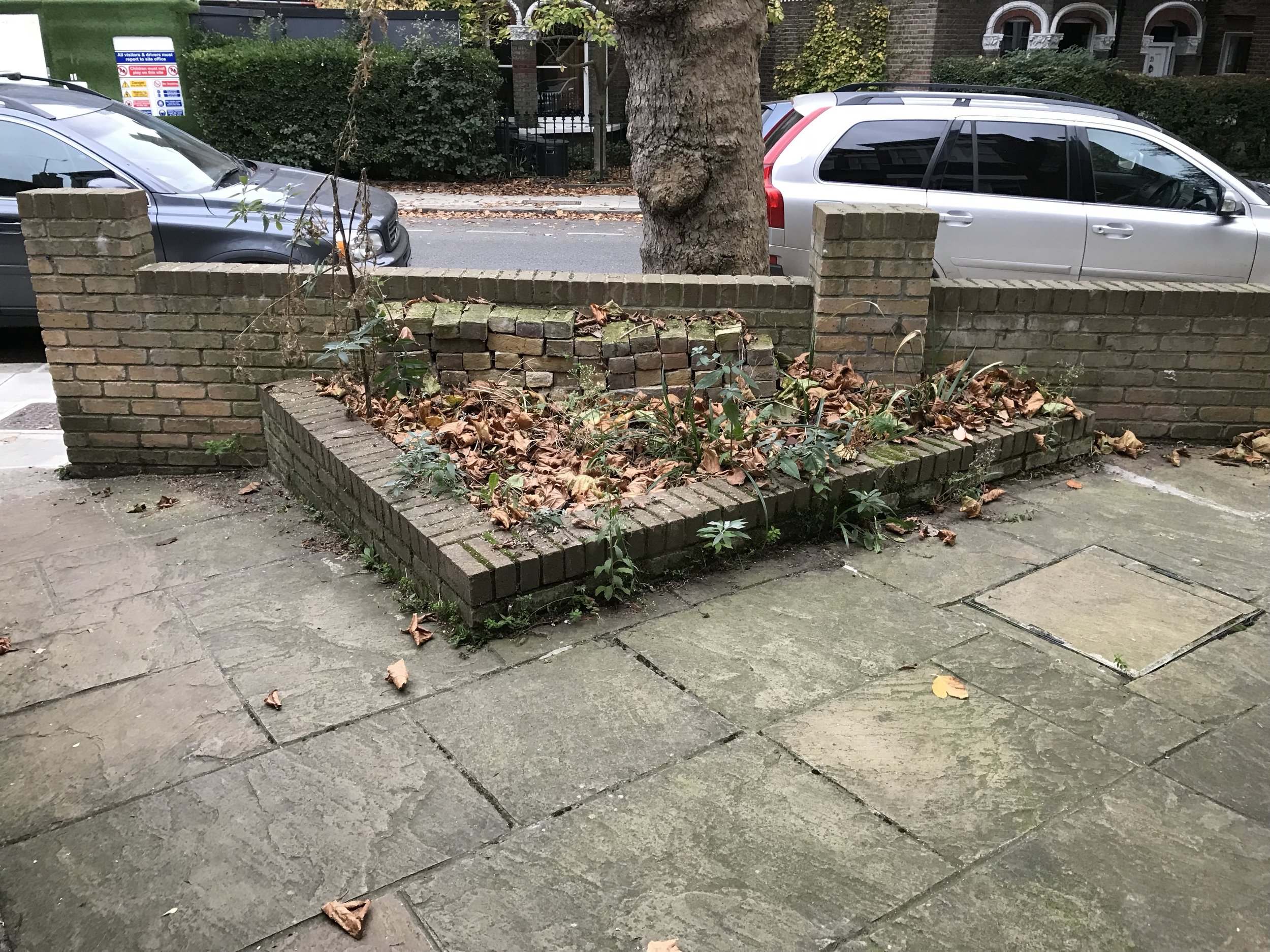 Before: Someone's idea of an acceptable flowerbed