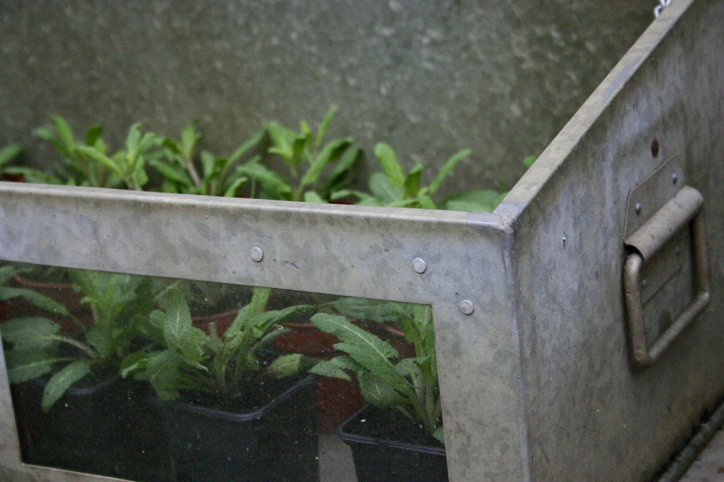 metal and glass cold frame