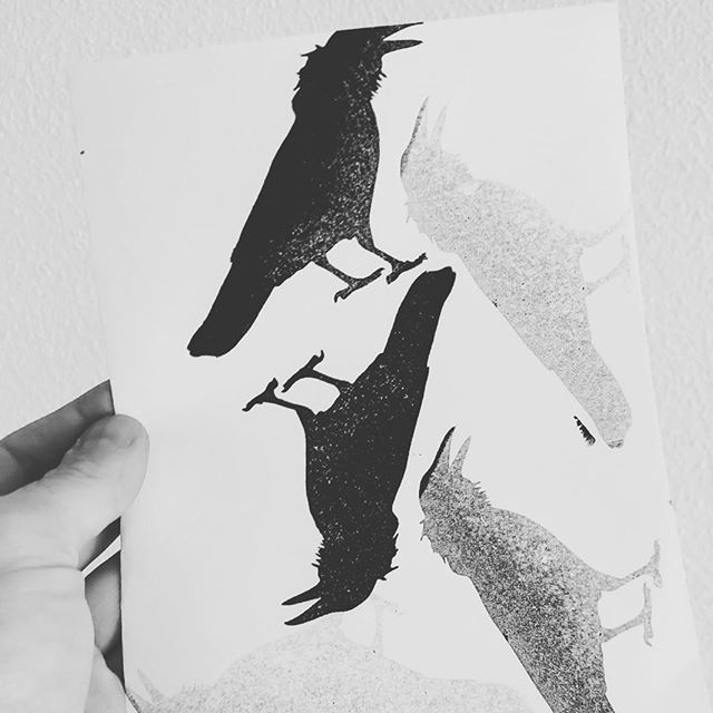 Something is crowing on in Den Haag. Keep your beaks to the wind...#crow #unself #unselfclothing #denhaag