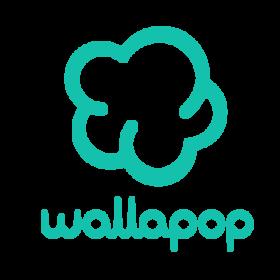 wallapop_bonsai_partners_venture_capital_3.png