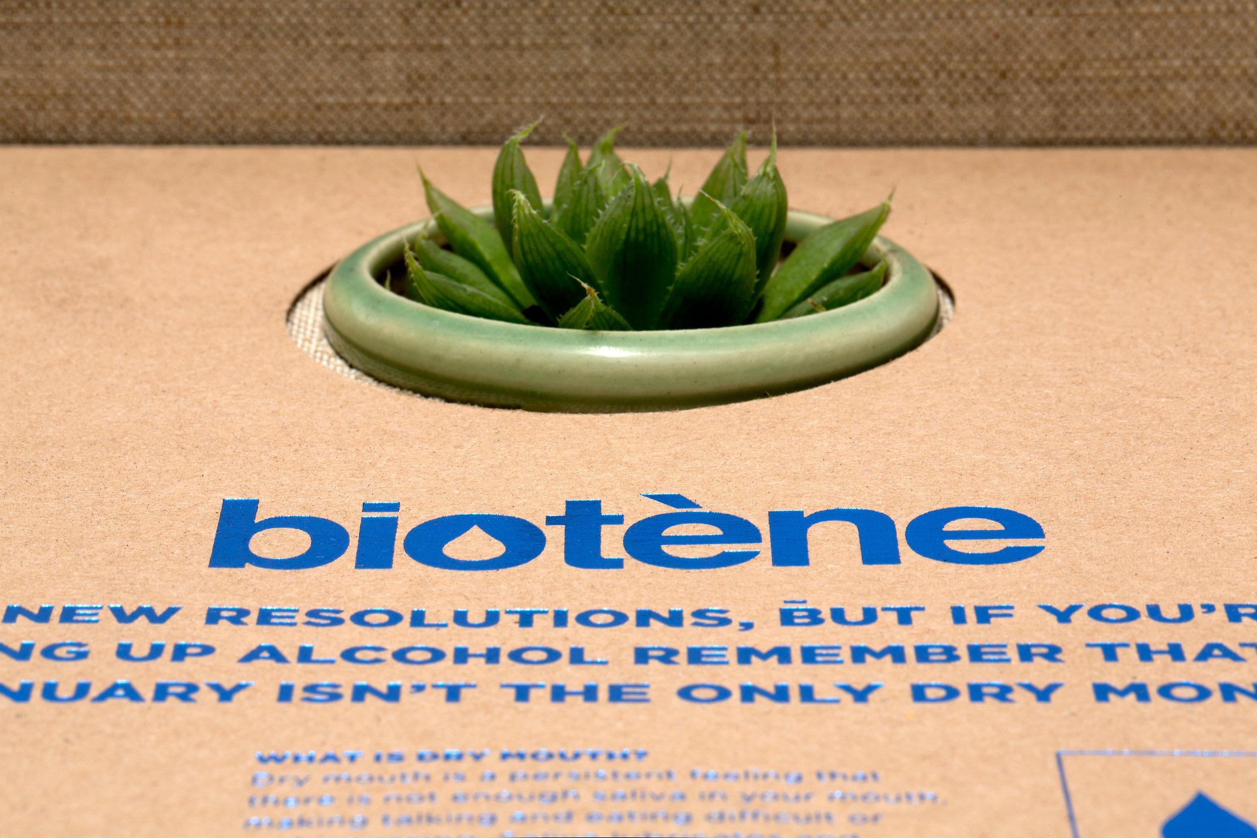 biotene_box_5.jpg