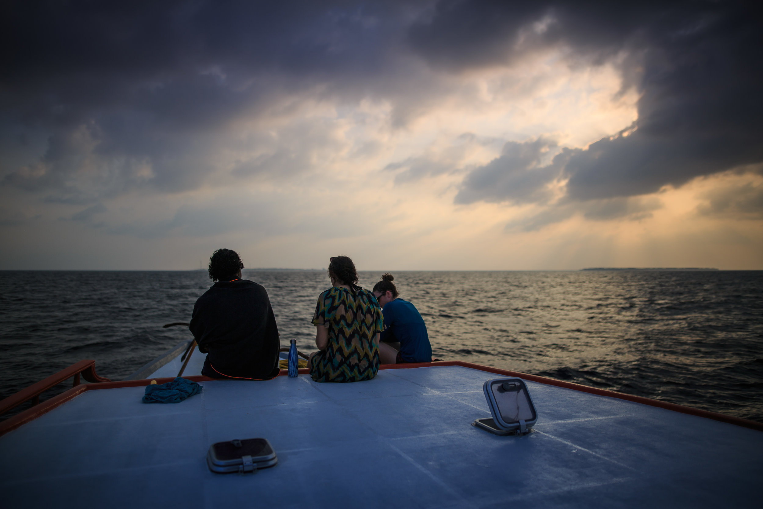 Sea Turtle Expedition Olive Ridley Project 2019