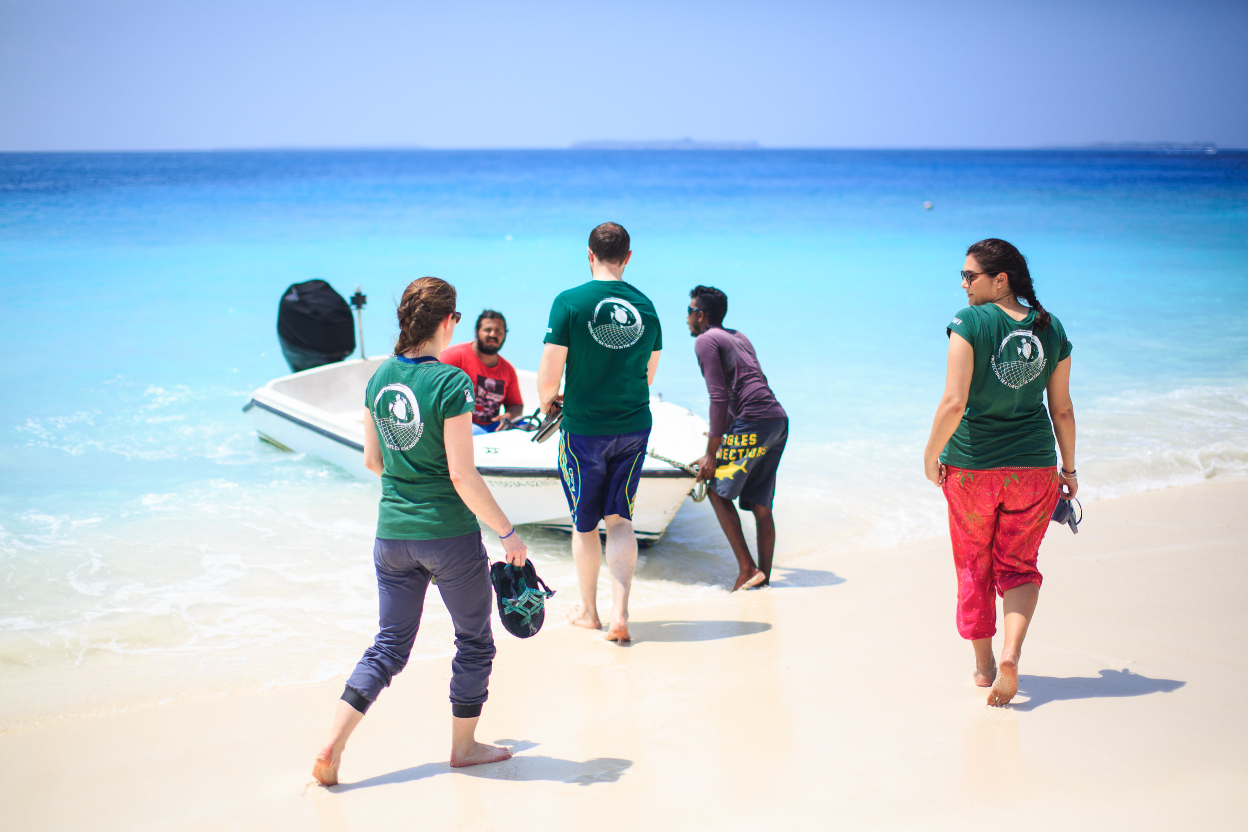 Olive Ridley Project volunteers Maldives