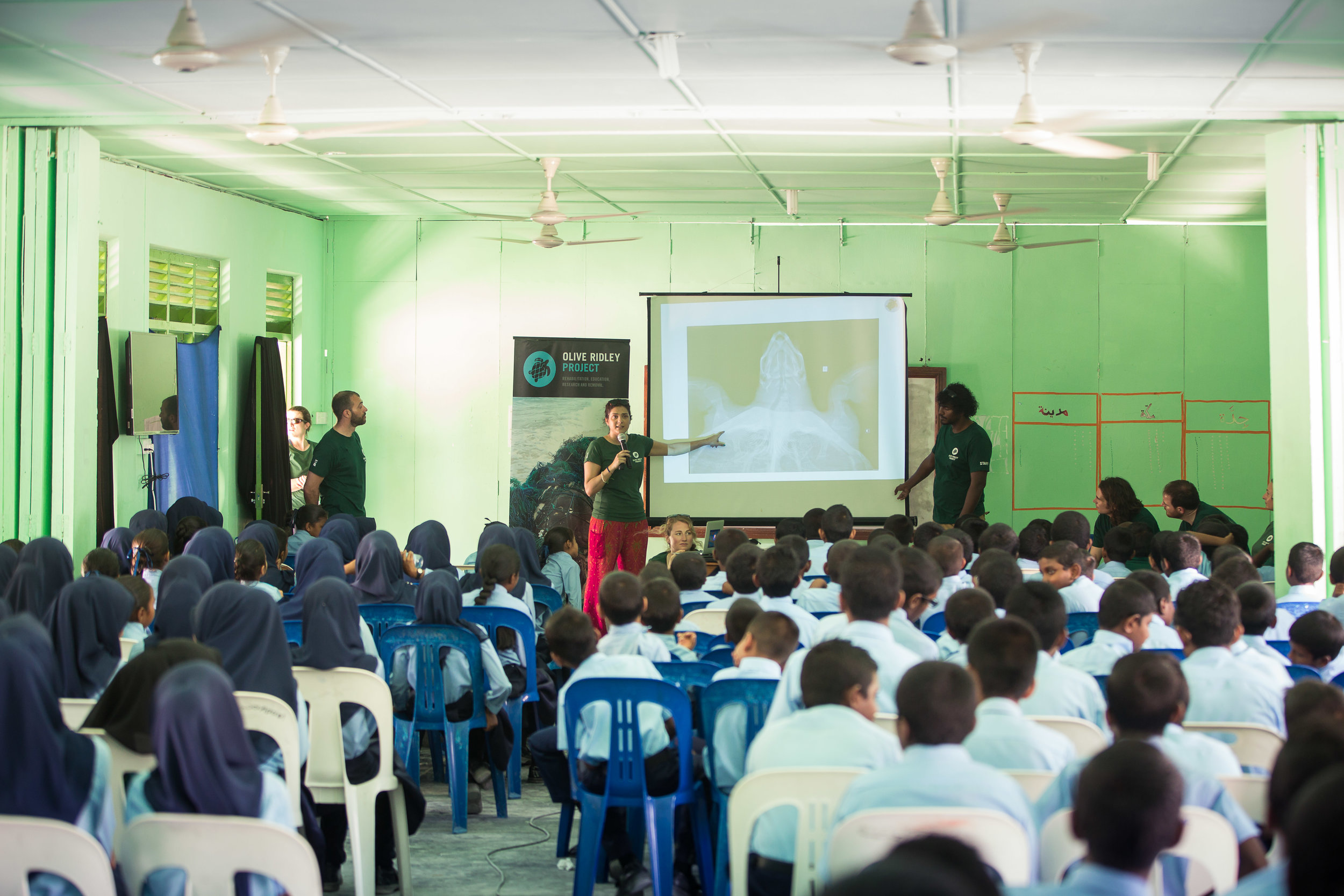 Olive Ridley Project's amazing outreach work