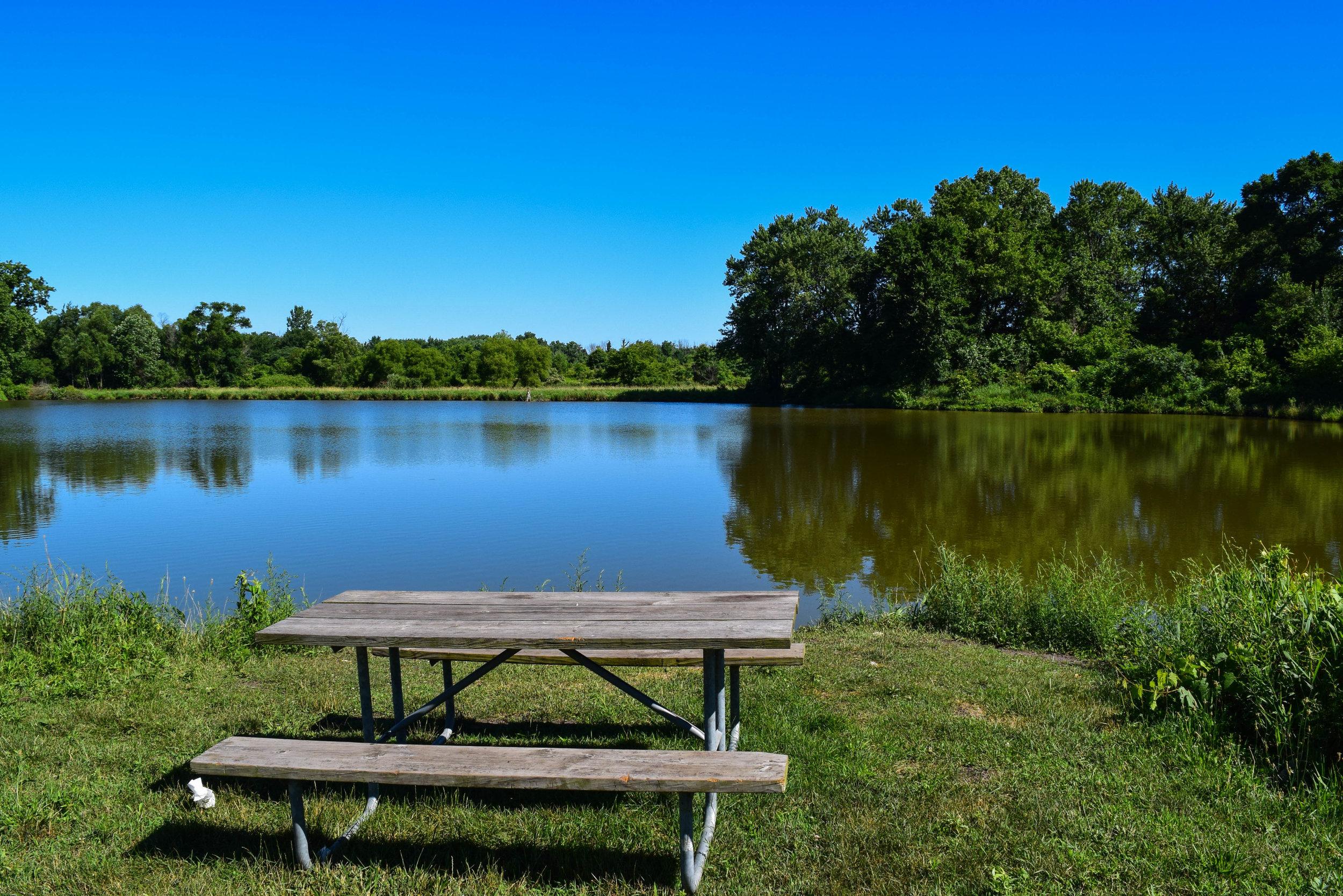 Brookdale Park-9.jpg