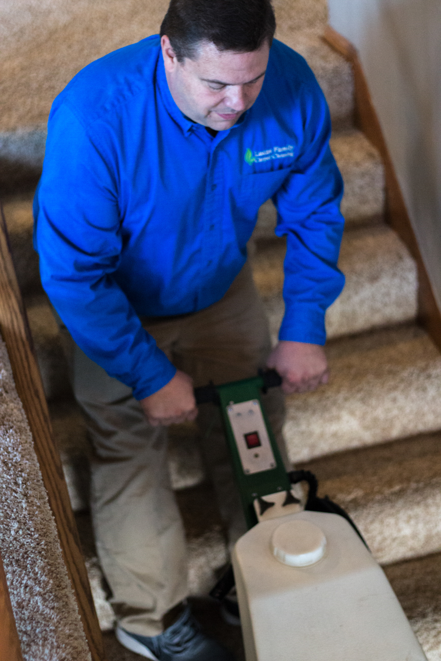 columbia-heights-carpet-cleaning-company.jpg