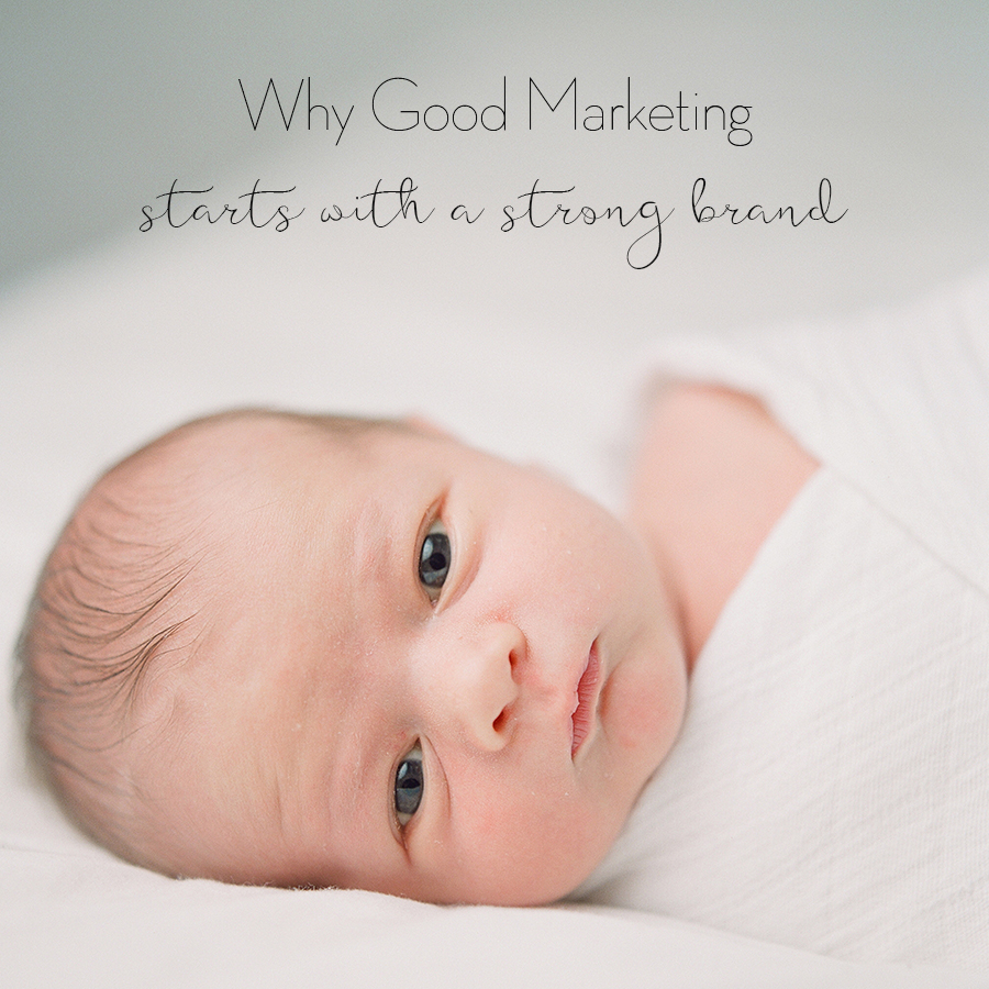 Sandra Coan Education why good marketing starts with a strong brand