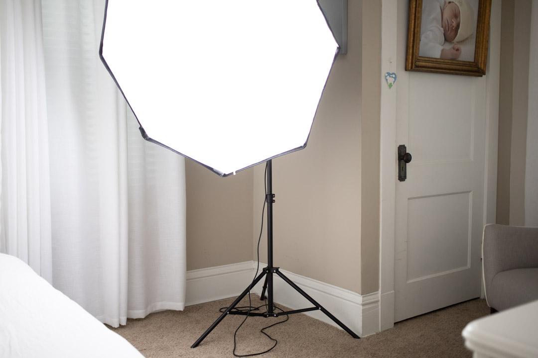 lea murphy | sandra coan education the missing link learn to use artificial lighting