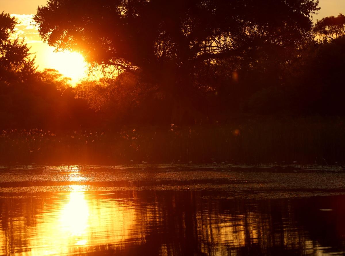 okavango sunset.jpg