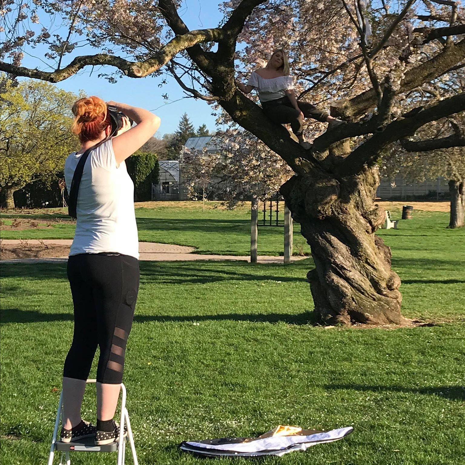 Cherry Blossom shooting in Gage Park - Hamilton (Photo by Sarah Marie Photography)