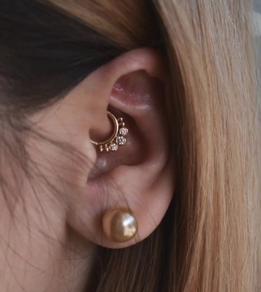 daith bvla.png