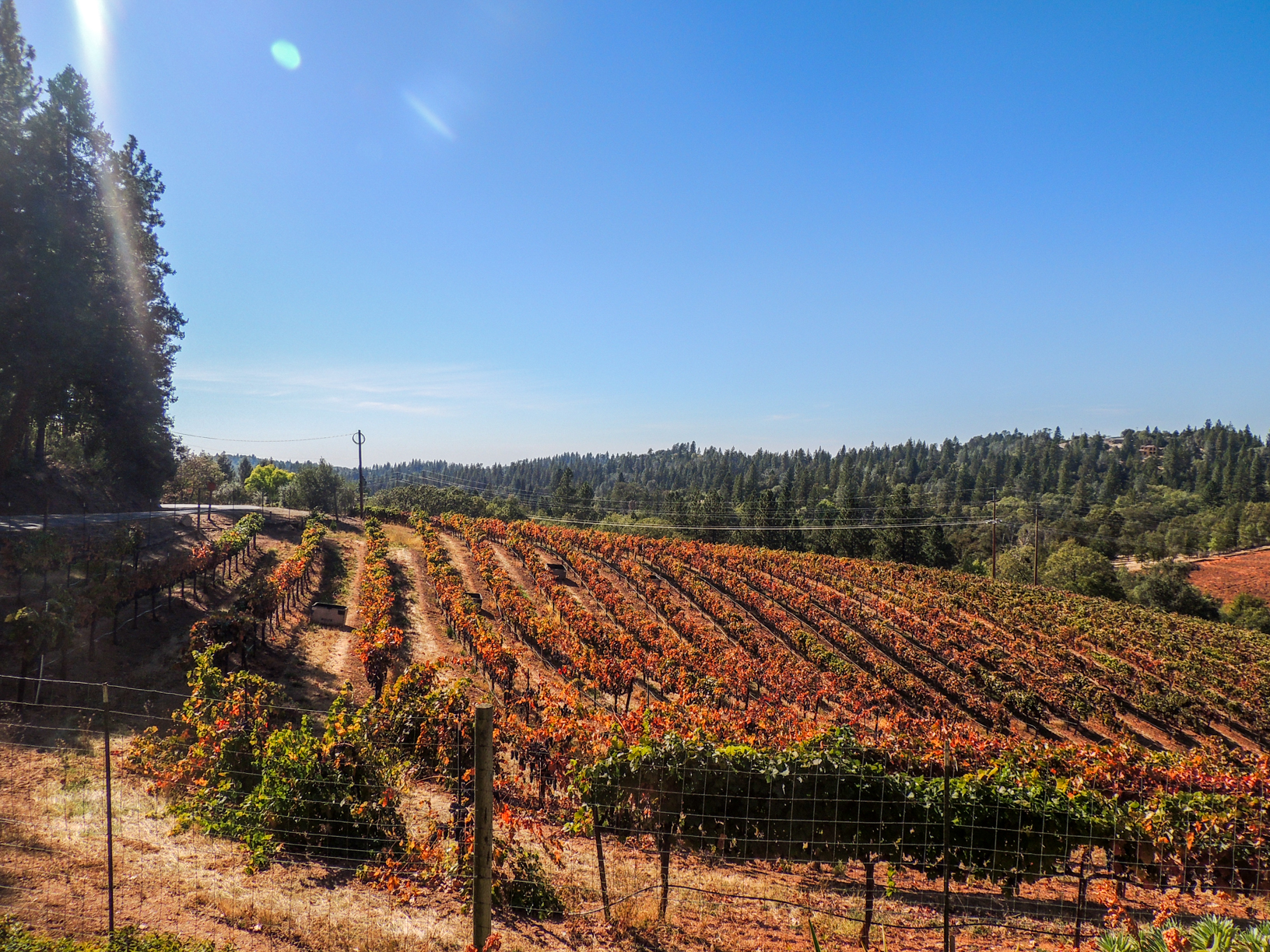 Wine Country, CA