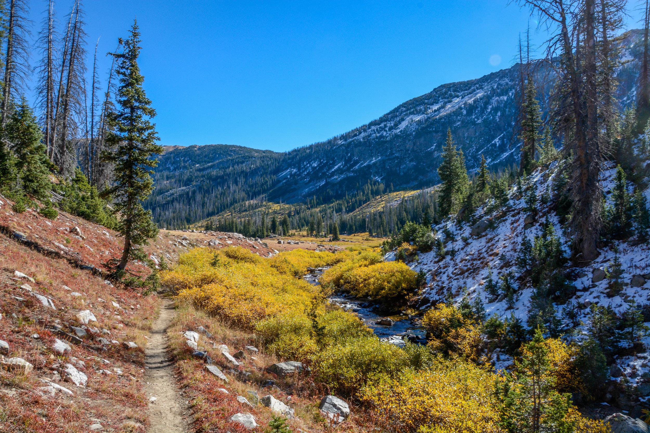 Zirkel Wilderness, CO