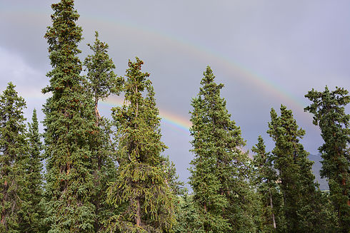 Rainbows!….two of them.