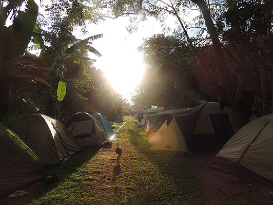 Camping in Byron Bay