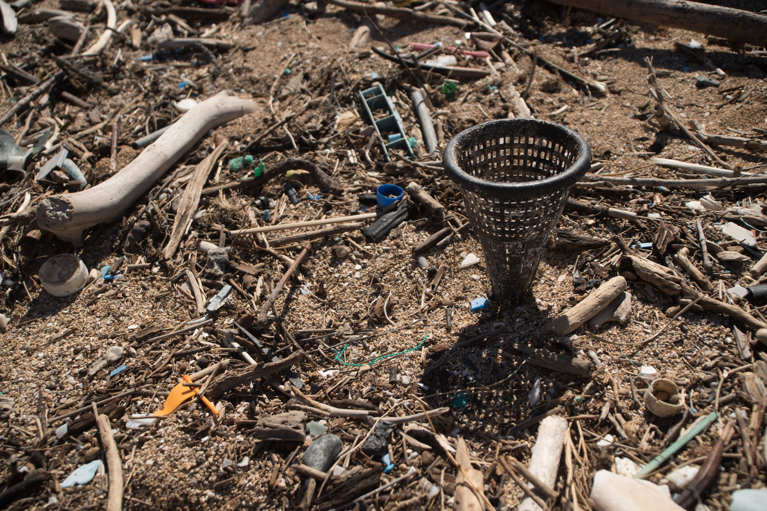 Plastic debris littering the beaches of Lana'i, Hawai'i